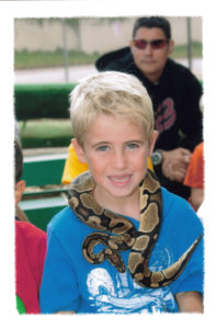 snakes11
